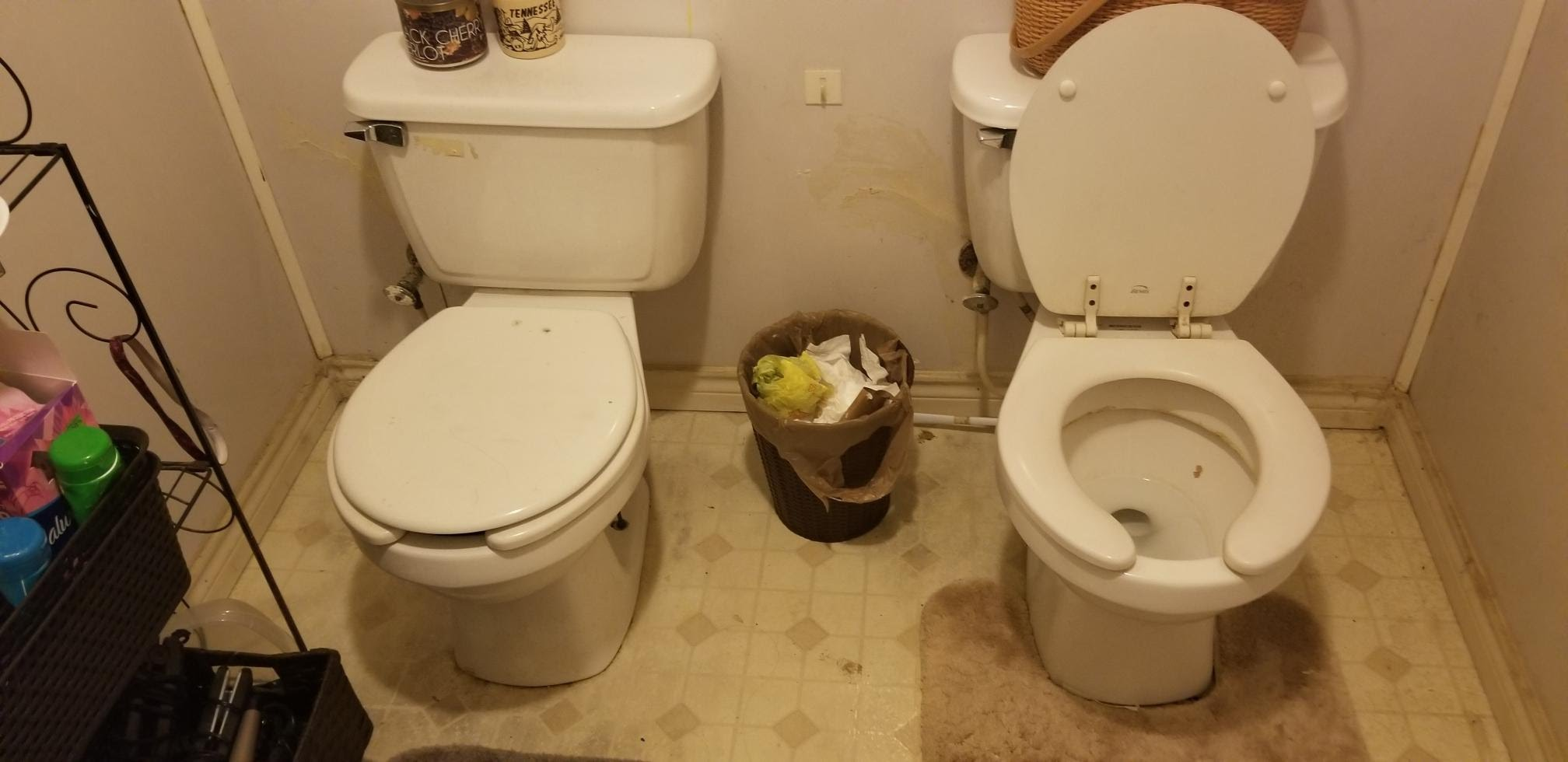 dueling toilets during a home inspection